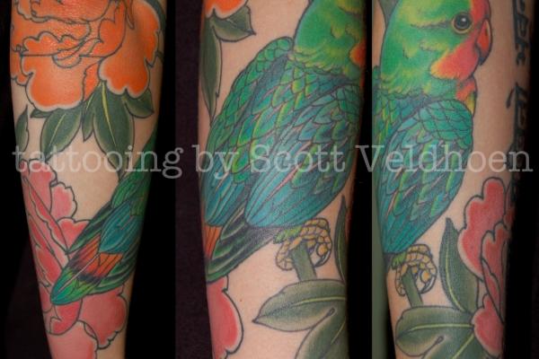 Scott-Veldhoen-bird-details-600x400.jpg